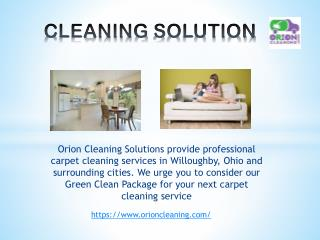 Orion Cleaning Solution