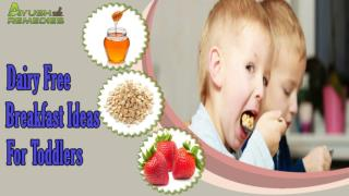 Delicious And Healthy Dairy Free Breakfast Ideas For Toddler