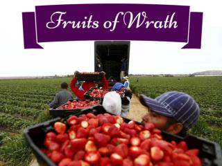 Fruits of Wrath