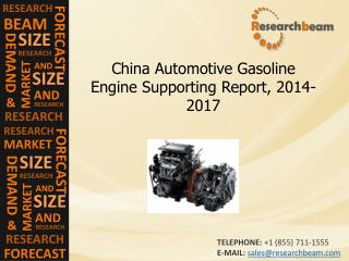 China Automotive Gasoline Engine Supporting 2014-17