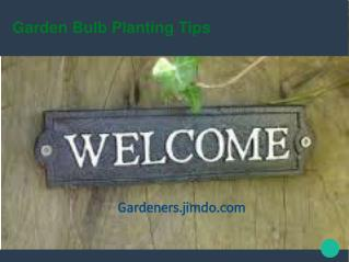 Guide To Bulb Planting