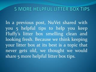5 MORE HELPFUL LITTER BOX TIPS