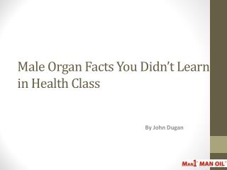 Male Organ Facts You Didn't Learn in Health Class