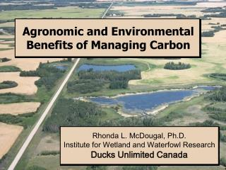 Agronomic and Environmental Benefits of Managing Carbon