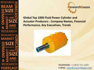 Global Fluid Power Cylinder and Actuator Producers - Company
