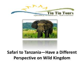 Safari to Tanzania—Have a Different Perspective on Wild King