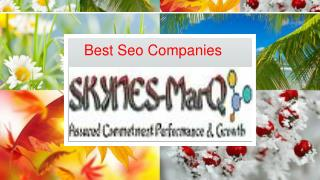 Best Seo Companies Skynes-MarQ