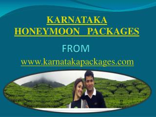 Karnataka Honeymoon Packages