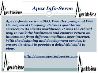 New York SEO | Apex Info-Serve
