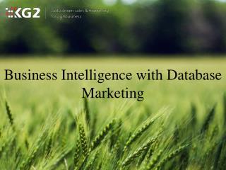 Business Intelligence with Database Marketing