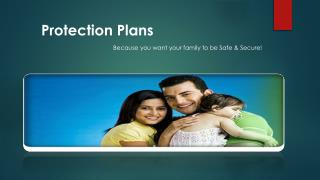 Protection Plan