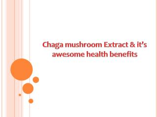 Chaga mushroom Extract & it's awesome health benefits