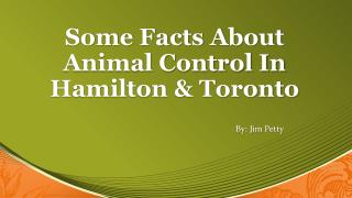 Some Facts About Animal Contro