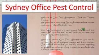 Sydney Office Pest Control
