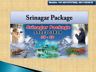 Srinagar Package