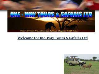 Welcome to One-Way Tours & Safaris Ltd