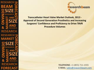 Transcatheter Heart Valve Market Outlook, 2013