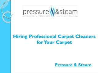 Hiring Professional Carpet Cleaners for Your Carpet
