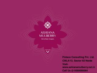 Ashiana Mulberry Sector-2 Gurgaon Call@ 9560090064