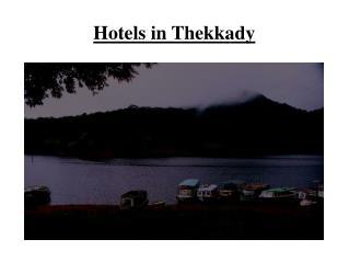 Thekkady Hotels