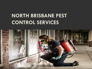 North Brisbane Pest Control Services