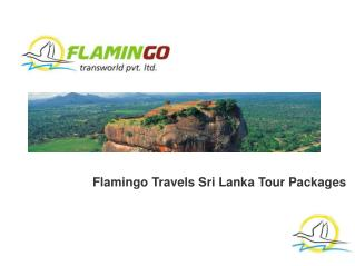 Explore Sri Lanka: A Gift From The Indian Ocean