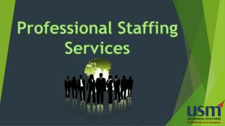 Professional Staffing Services