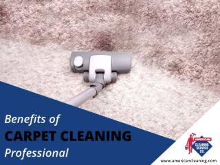 Carpet Cleaning in Boise – The Need for Professionals
