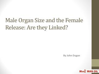 Male Organ Size and the Female Release  Are they Linked