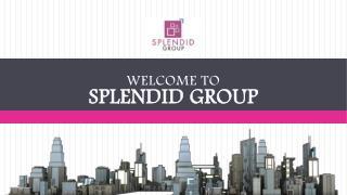 Splendid group