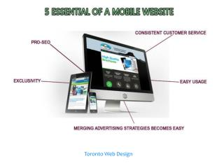 5 essential of a mobile website