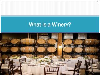 What is a Winery