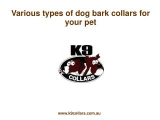 Various types of dog bark collars for your pet