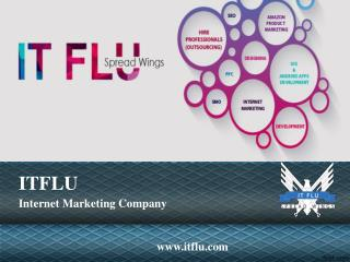 Hire Professional Content Writers | ITFLU