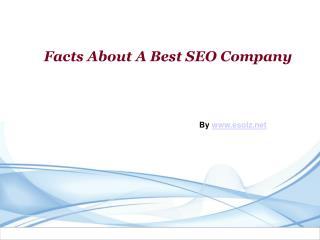 Best SEO Company's Service For You