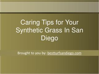 Caring Tips for Your Synthetic Grass In San Diego