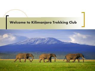 Welcome to Kilimanjaro Trekking Club