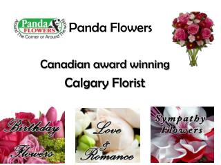Flowers Delivery Calgary Online at PandaFlowers