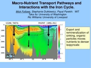 Macro-Nutrient Transport Pathways and Interactions with the Iron Cycle.