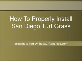 How To Properly Install San Diego Turf Grass