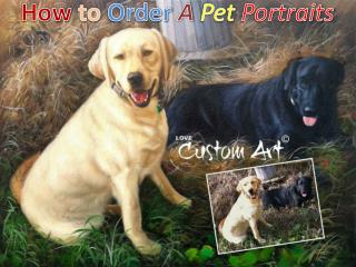 How to Order A Pet Portraits - LoveCustomArt