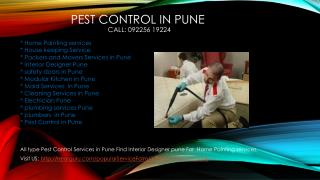 Pest Control in Pune, Cleaning Services in Pune