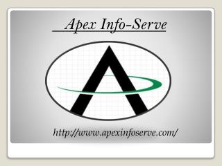 NYC  SEO- Apex Info-Serve