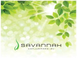 Savannah  brochure