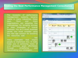 Performance Management Consultancy