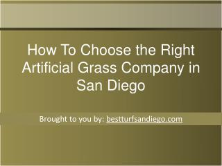 How To Choose the Right Artificial Grass Company in San Dieg