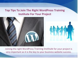 Top Tips To Join The Right WordPress Training Institute