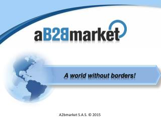 Direct Access To Latin-Caribean Market - B2B Portal