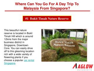 5 natural reservoirs to visit in Singapore