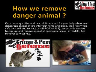 How we remove danger animal ?
